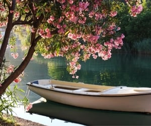 boat, flowers, and nature image