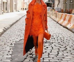 coat, luxury, and tights image