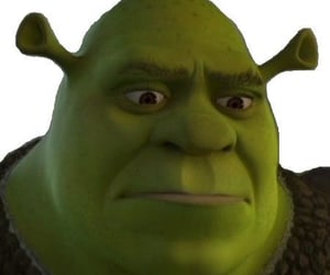 funny, reaction, and shrek image