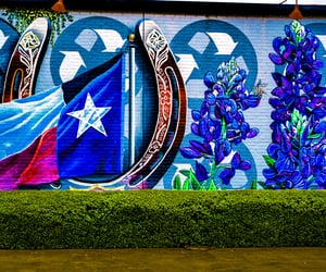 street art, Dallas, and flowers image