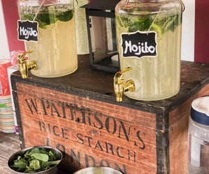 alcohol, garden party, and mojito image