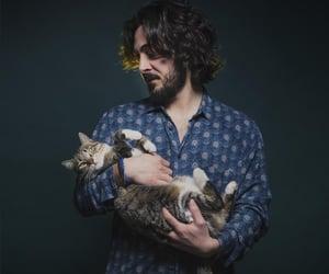 cat, italian, and indie image