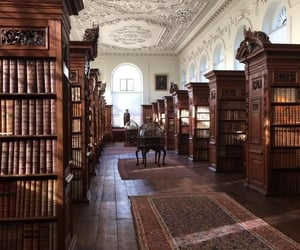 library, books, and dark academia image