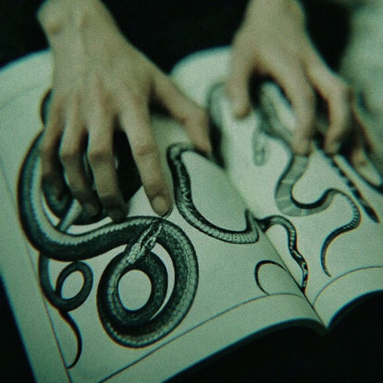 slytherin, snake, and book image