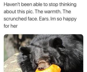 happy girl and punkin bear image