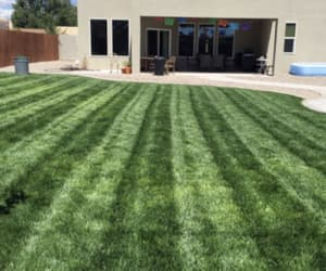 lawn experts near me image