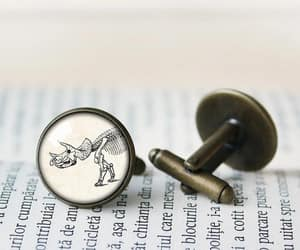 cufflinks, dino, and fossil image