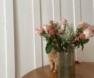 apartment, cat, and decoration image