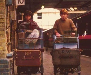 harrypotter, philosopher stone, and ronweasley image