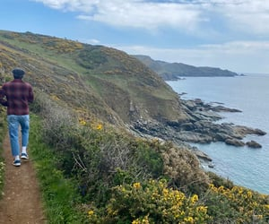 beautiful, niall horan, and nature image