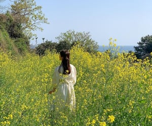 field, girl, and green image