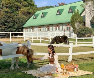 animals, countryside, and cozy image