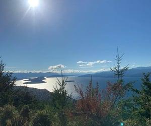 arboles, lago, and naturaleza image