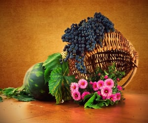 basket, photography, and flowers image