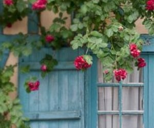 cottage, beautiful, and roses image