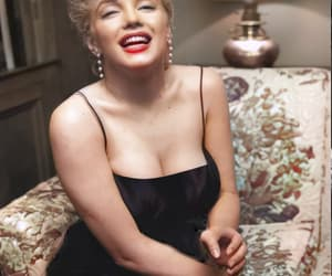 Marilyn Monroe and screen icons image