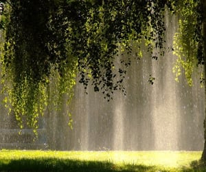 green, sunlight, and tumblr image