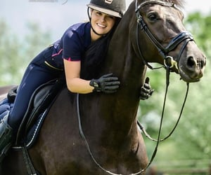 bay, equine, and ride image
