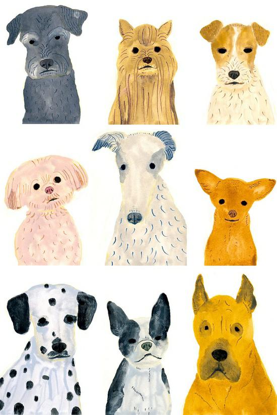 dog, art, and animal image