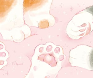 cats, cute, and paws image