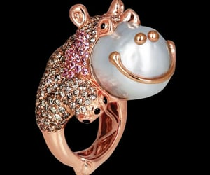 bling, hippo, and rings image