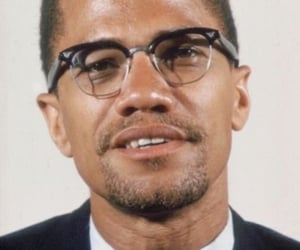 taurus the bull, by any means necessary, and malcolm x image