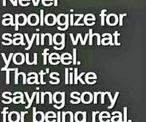 quotes, apologies, and truestory image