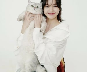 lisa, minimalist, and pets image