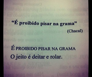 frase, chacal, and photography image