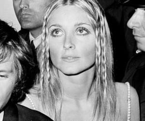 black and white and sharon tate image