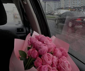 flowers, rose, and pink image