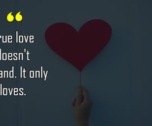love quotes, true love, and true love quotes image
