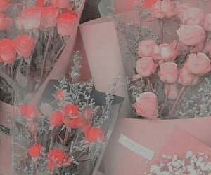 aesthetics and flowers image