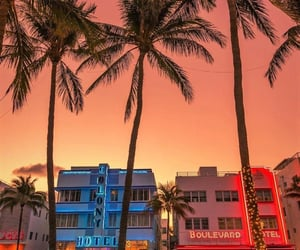 florida, Miami, and places image
