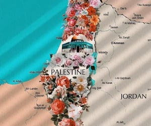 free, فلسطين, and حبيبتيً image