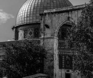 islam, muslim, and فلسطين image