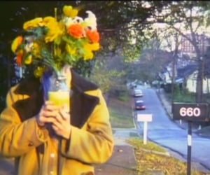 aesthetic, film, and flowers image