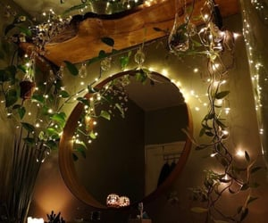 light, mirror, and plants image