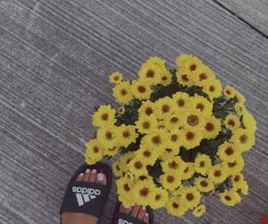 beauty, summer, and adidas image