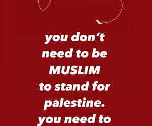 Gaza, palestine, and sheikh jarrah image
