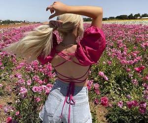 amazing, beautiful, and flower image