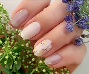 aesthetic, nature, and gel nail image