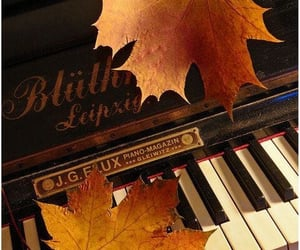 piano and autumn image