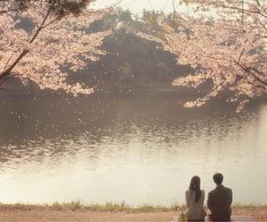 asia, cinematography, and korea image