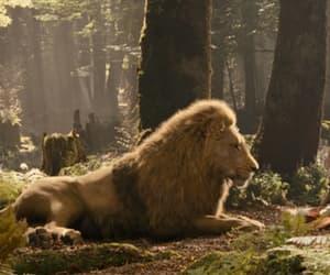 georgie henley and aslan image