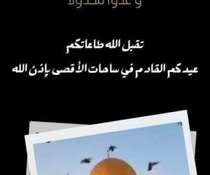 فلسطين, آية, and نصر image