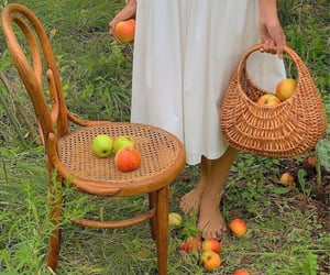 apple, basket, and countryside image