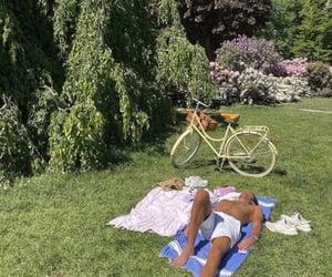 bike, nature, and picnic image