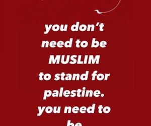Gaza, palestine, and palestine lives matter image