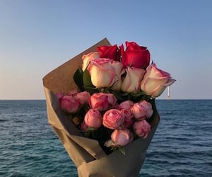 flower, ocean, and roses image
